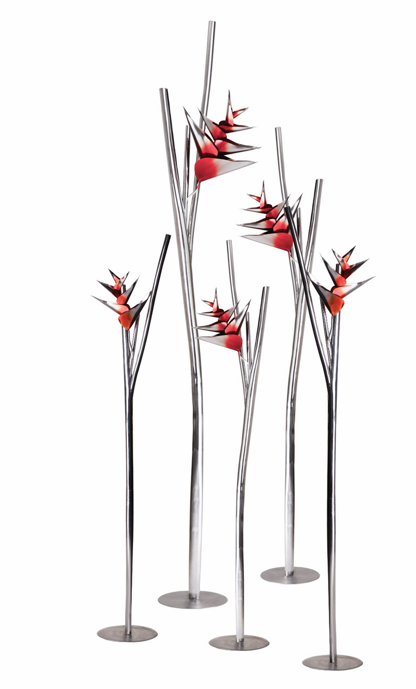 Heliconia group of 5