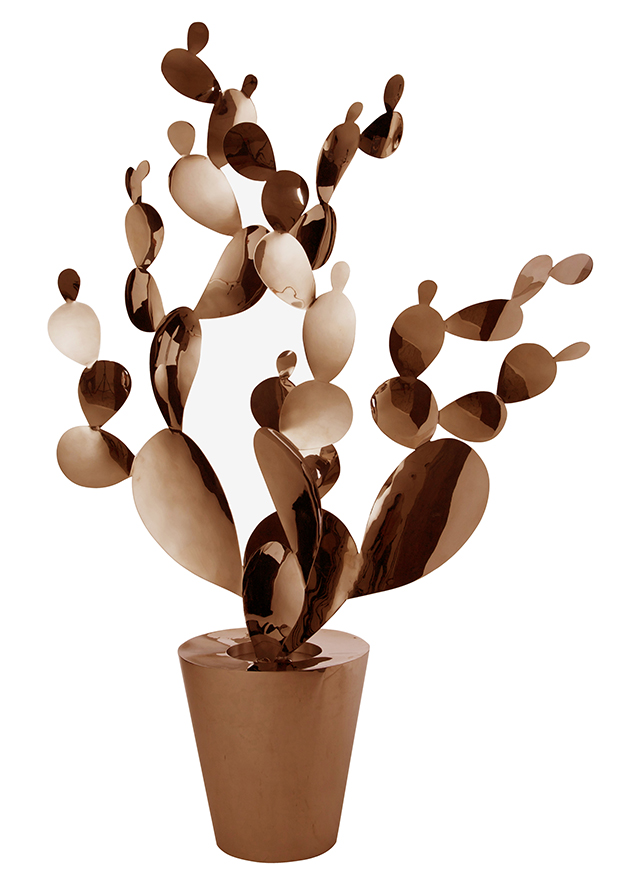 Opuntia Copper XL