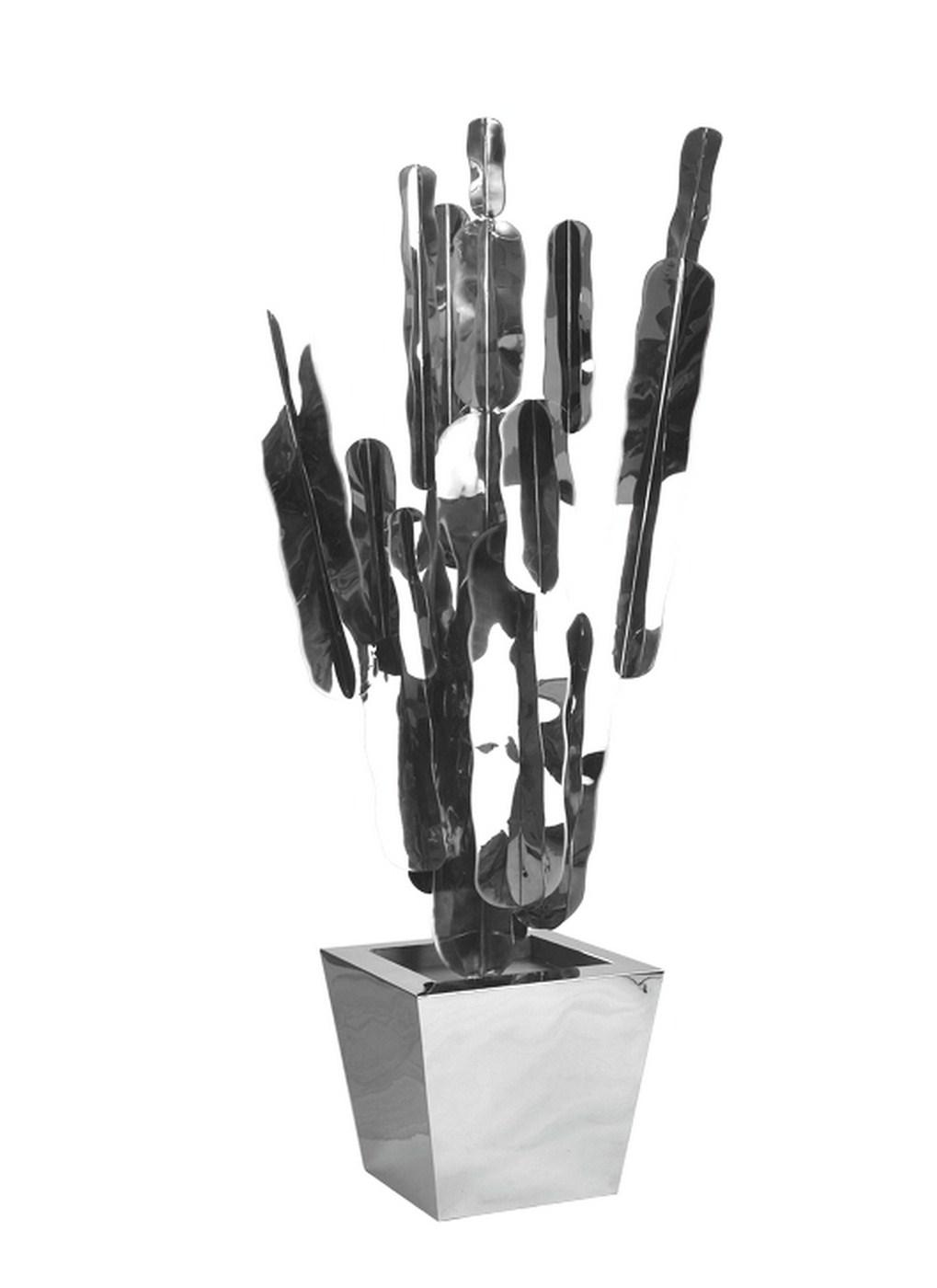 Cactus exl
